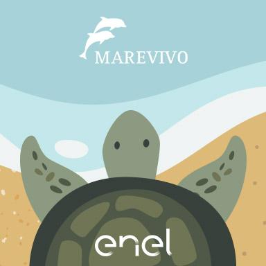 """Con """"Menù di mare"""" Enel Energia sostiene Marevivo per la tutela dell'ambiente marino"""